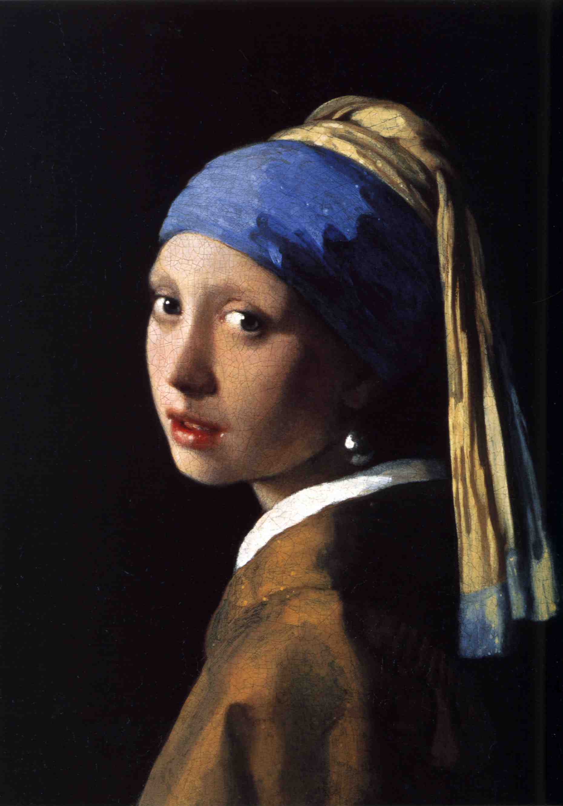 essay questions for girl with a pearl earring