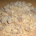Frankincense from Dhofar ?